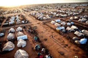 Giornata internazionale per la prevenzione dello sfruttamento dell'ambiente nella guerra e nei conflitti armati
